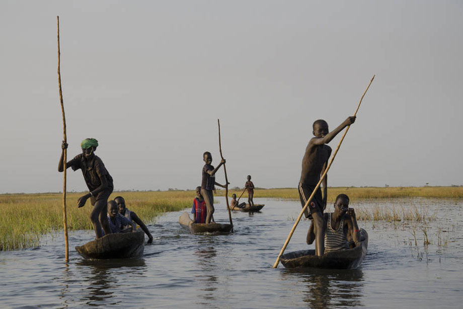Young boys head home after fishing for a day in the swamps of Nyal, South Sudan. Photo: FAO/Lieke Visser