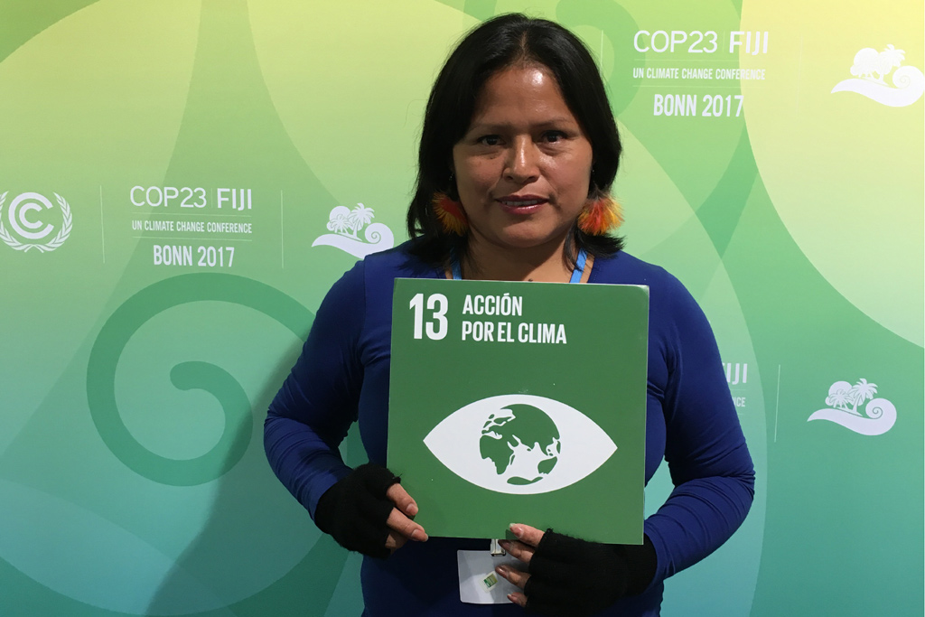 Indigenous activist from Peru, Rosalia Yampis, Director of Women Program in the Interethnic Association for the development of the Peruvian rainforest (AIDESEP). Photo UN Social Media team/Karin Orantes