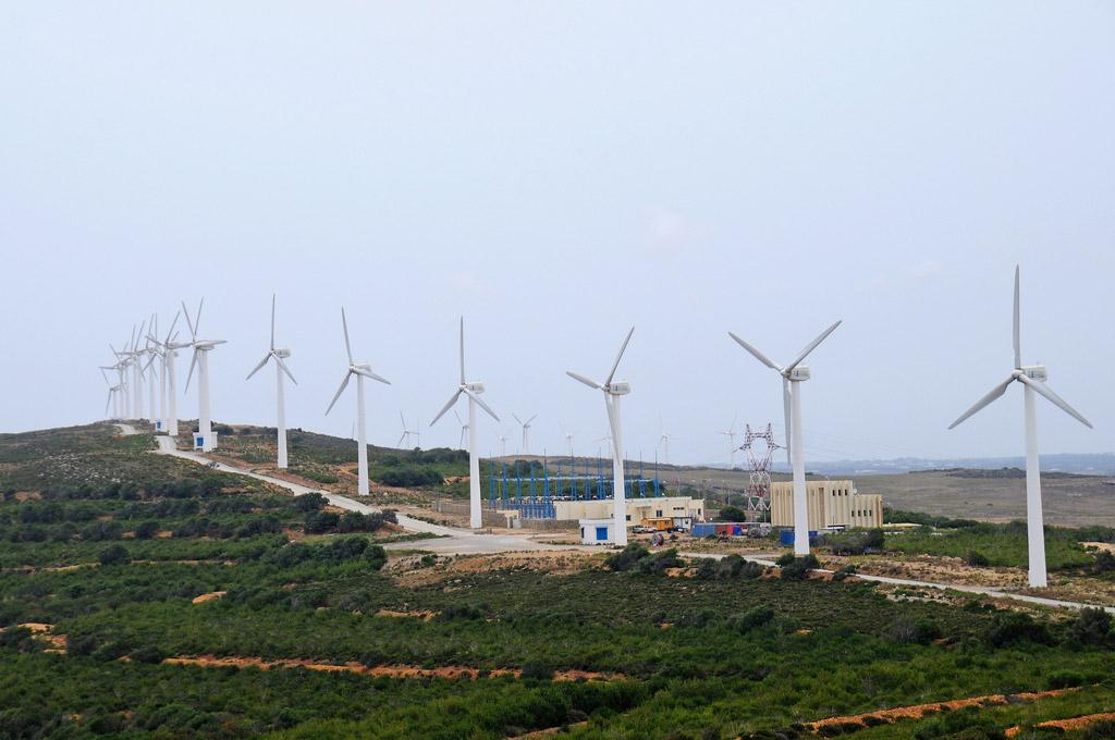 A wind turbine farm in Tunisia. Photo: World Bank/Dana Smillie