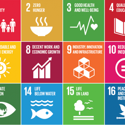 SDGs – roadmap to build back better, greener and fairer