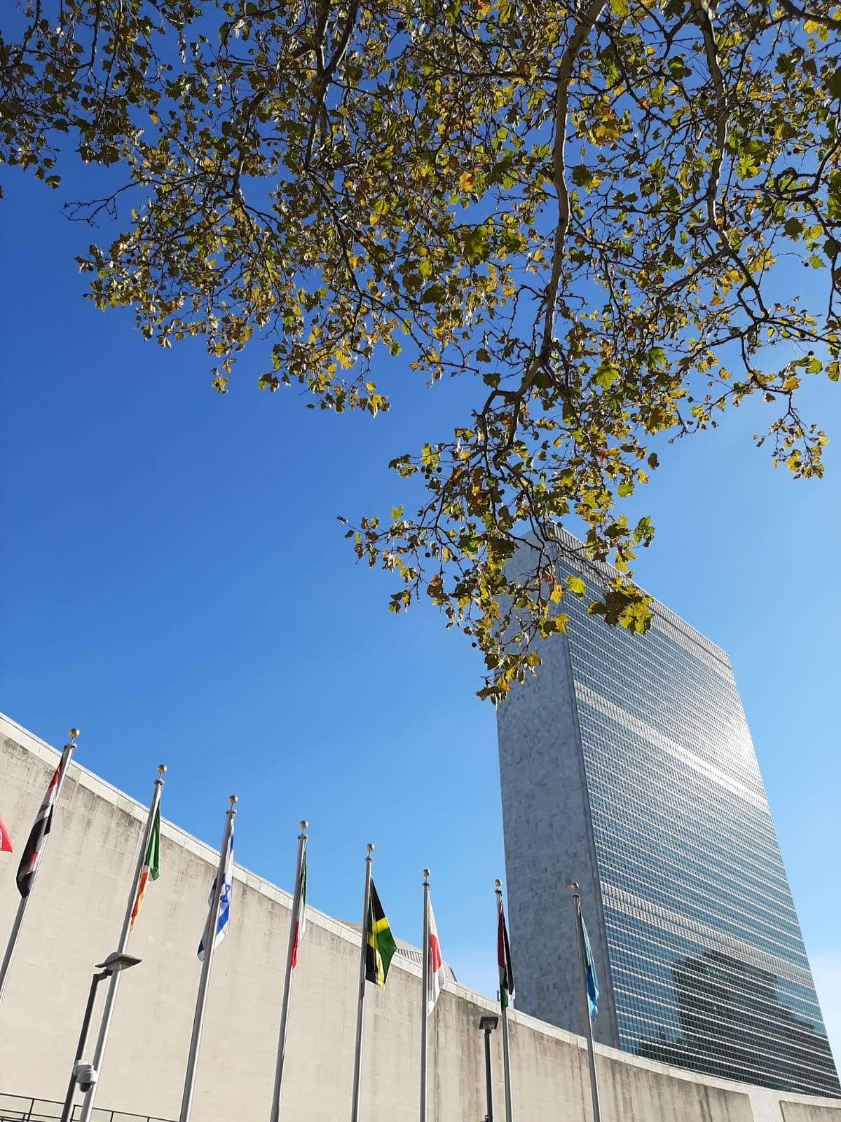 2020 UNAA Study Tour to the UN in New York